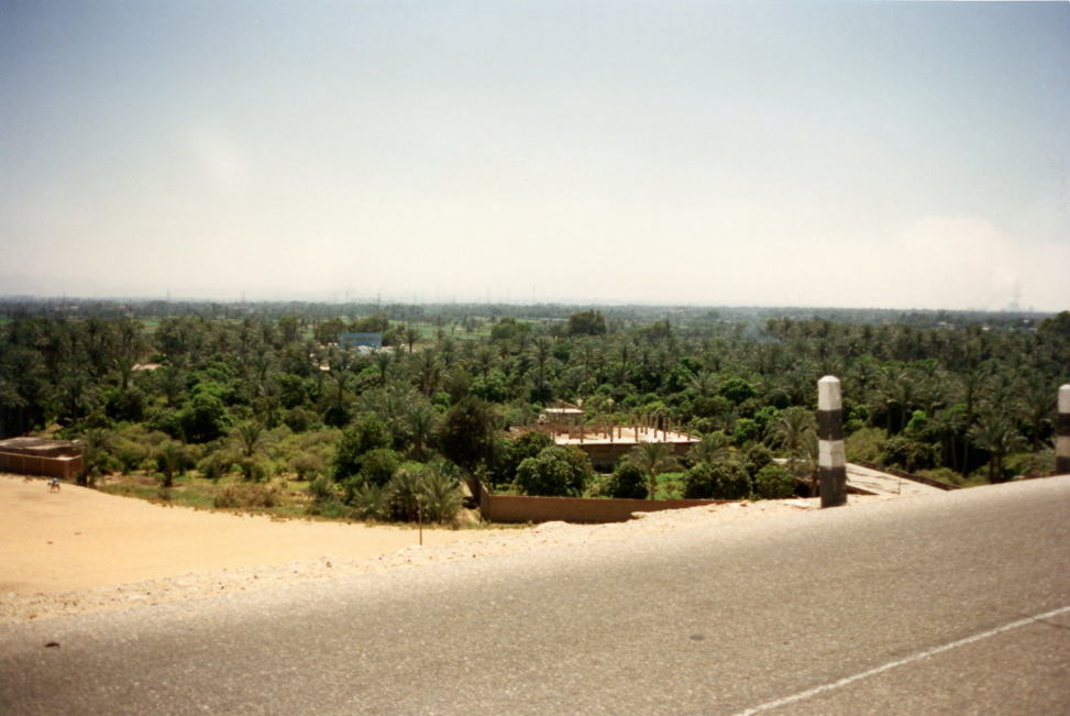 Nile valley from near the pyramids