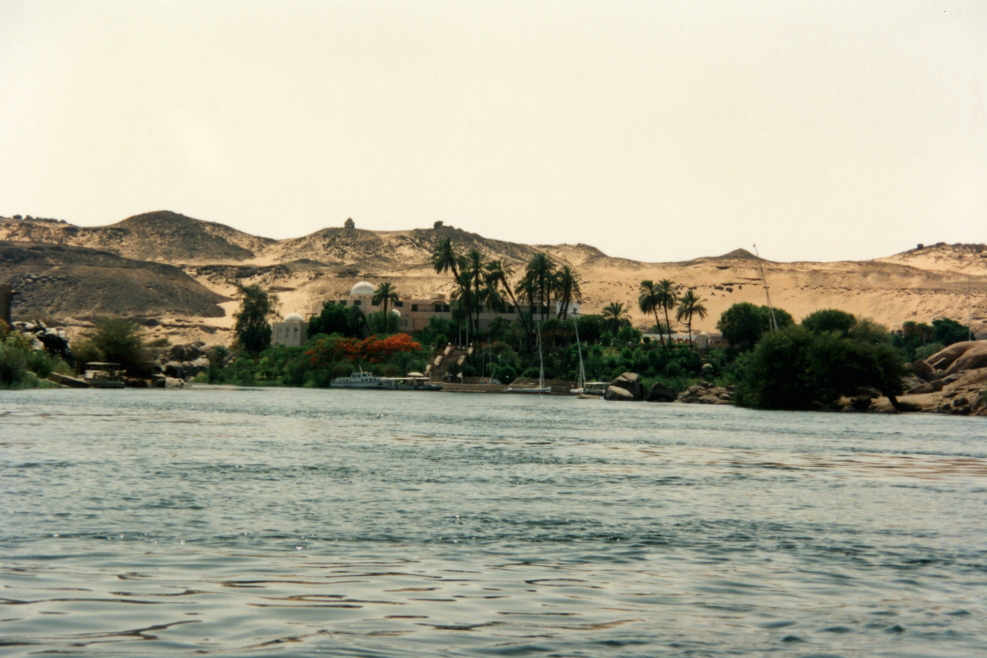 Nile River bank from the felucca
