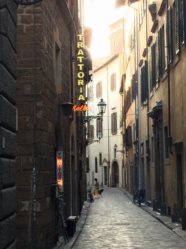 I really liked this view of a Florence street near dusk