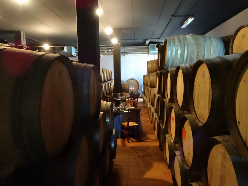 Casks at the Palagetto vineyard