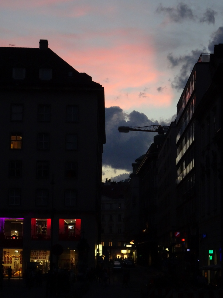 Sunset in Vienna