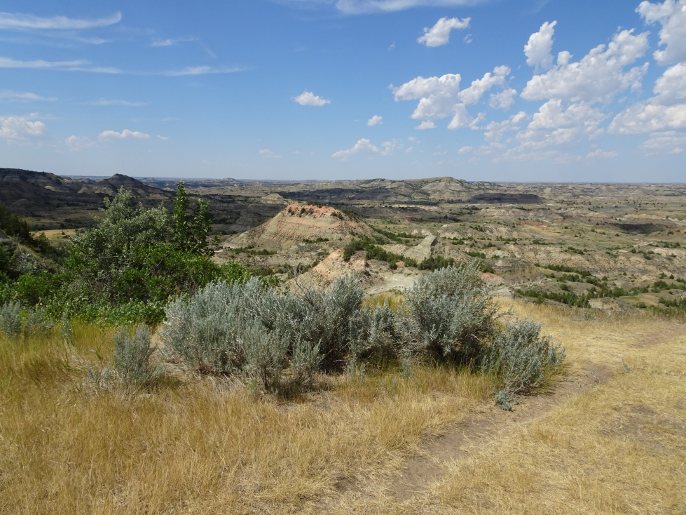 View from the Painted Canyon overlook